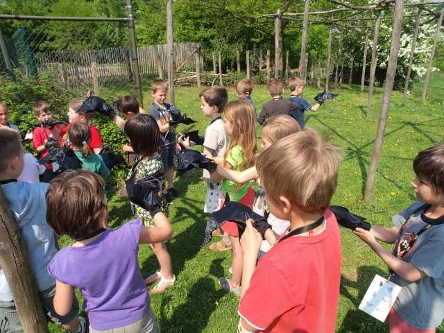 Nature and environmental education
